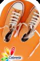 La scarpina innamorata